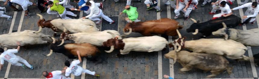 Running of the bulls on Calle Estafeta, Pamplona